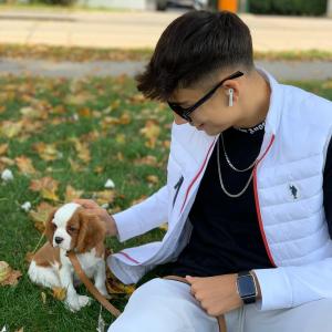 Hundezüchter, mit Lieferung in die Schweiz